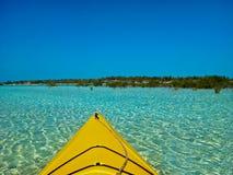 Kayaks et palétuviers Photo stock
