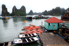 Kayaks in Halong bay, Vietnam Royalty Free Stock Photography