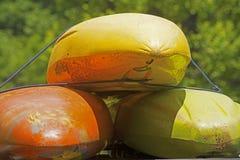 Kayaks jaunes et oranges empilés sur l'un l'autre photo stock