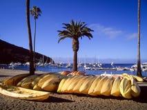 Kayaks jaunes s'étendant sur la plage Photos stock