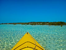 Kayaks and Mangroves Stock Photo
