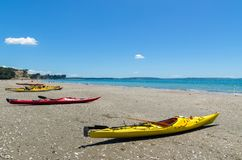 Long Bay Beach Park in Auckland,New Zealand. Stock Images