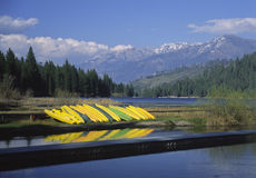Kayaks on the shore of Hume Lake in California Stock Images