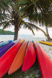 Kayaks sous des cocotiers Images stock