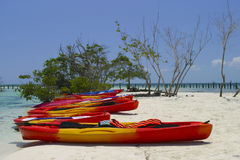 Kayaks on tropical beach. Many multi colored kayaks on the sands of a tropical beach. Vegetation and ocean are visible in the background Stock Images