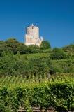 Kaysersberg Schloss, Elsass Stockfotografie