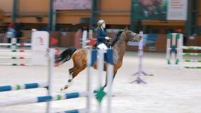 Kazán, Rusia - 25 de abril de 2018: Campeonato ecuestre - jinete ecuestre en el caballo que salta sobre el obstáculo almacen de metraje de vídeo