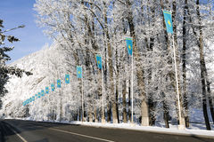 Kazachstan ` s flaga Obrazy Royalty Free
