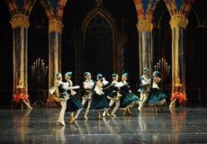 Kazak young people-ballet Swan Lake Royalty Free Stock Images