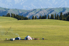 Kazak yurts at the grassland Stock Image