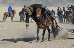 Kazakh Buzkashi Stock Photography
