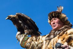 Kazakh Eagle Hunter Berkutchi with horse teaches his daughter to hunting to the hare with a golden eagles. BAYAN-ULGII, MONGOLIA - SEP 30, 2017: Kazakh Eagle Royalty Free Stock Photos