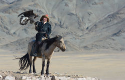 Kazakh Eagle Hunter 2 Stock Photo