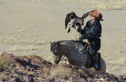 Kazakh Eagle Hunter 5 Stock Photo