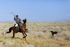 Kazakh herder in the steppe, Kazakhstan. royalty free stock photography