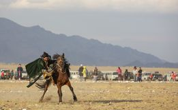 Kazakh man onhis horse moving fast speed stock photo