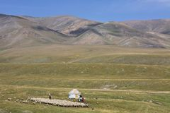 Kazakh nomadic people with their yurt and herd of sheep, in Assy Plateau, Kazakhstan royalty free stock photo