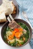 Kazakh soep met schaap - shurpa Royalty-vrije Stock Afbeeldingen