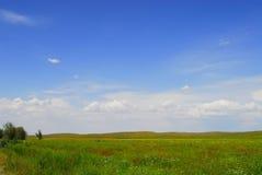 Kazakh steppe in de lente op een de zomerdag Royalty-vrije Stock Foto's