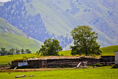 Kazakh traditional cottage and the fold Royalty Free Stock Photos