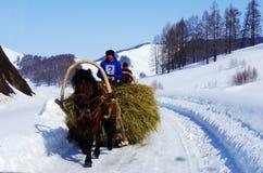 Kazakhs bemannen auf dem Wagen Stockbild