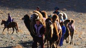 Kazakhs kom med Bactrian kamel för att sammanfoga konkurrensen lager videofilmer