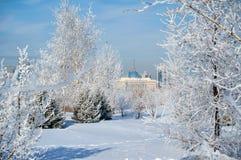 kazakhstan för astana avenyhuvudcentral cityscape sommar 2010 Astana är huvudstaden av Kasakhstan royaltyfria bilder