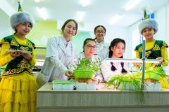 2019-09-01, Kazakhstan, Kostanay hydroponics Plantes vertes croissantes dans l'eau sans terre Ouverture officielle du laboratoire photos libres de droits