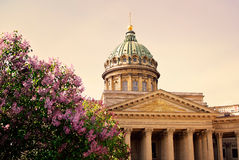 Kazan Cathedral at sunset St. Petersburg, Russia stock images