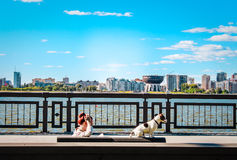Kazan Girl and dog Royalty Free Stock Images