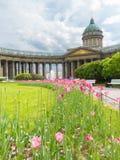 Kazan Kathedraal, St Petersburg, Rusland Stock Afbeeldingen