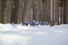 Kazan, Rússia - em março de 2018: Esquiadores dos atletas que correm uma maratona nas madeiras do inverno Imagem de Stock