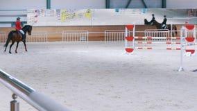 Kazan, Rusland - April 25, 2018: Ruiterkampioenschap - de Ruiter vrouwelijke ruiter op de hengst bij toont het springen stock footage