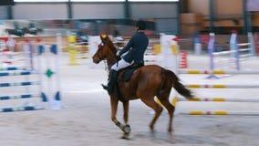 Kazan, Russia - 25 aprile 2018: Campionato equestre - cavaliere maschio che corre su un cavallo sopra l'ostacolo archivi video