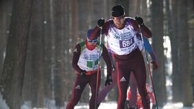 Kazan, Russia - March, 2018: Athletes skiers running Kazan ski marathon in the winter woods. Winter sports and competition concept stock footage