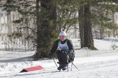 KAZAN, RUSSIA - MARCH, 2018: Disabled man participant on ski-track on ski competition. In sunny day in forest royalty free stock photos