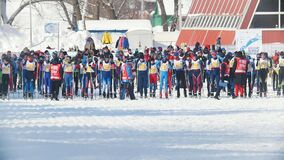 KAZAN, RUSSIA - MARCH, 2018: Group of skiers waiting for start on the ski-track on cross-country skiing. KAZAN, RUSSIA - MARCH, 2018: Group of skiers waiting for stock video footage