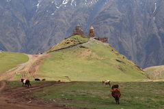 Kazbegi Royalty Free Stock Photos