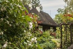 Kazimierz Dolny, Poland - an old house/greenery. Royalty Free Stock Photo