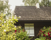 Kazimierz Dolny, Poland - an old house/roses. This image shows a view of Kazimierz Dolny, a small town in Poland, Europe. It was taken in June 2017 on a Stock Photos