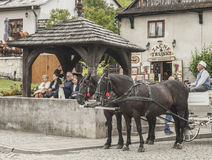 Kazimierz Dolny, Poland - a street in the town/horses. Royalty Free Stock Images