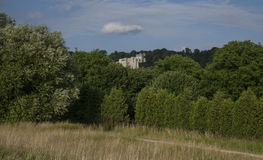 Kazimierz Dolny, Poland - in the woods. This image shows a view of Kazimierz Dolny, a small town in Poland, Europe. It was taken in June 2017 on a beautiful Stock Photos