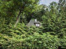 Kazimierz Dolny, Polonia - nella casa nascosta woods/a Fotografia Stock Libera da Diritti