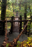Kazubarashi - Japanese bridge of lianas stock photos