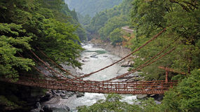 Kazurabashi在Iya谷的藤桥梁 免版税库存照片