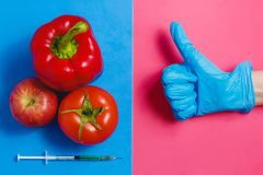 Kciuka up Zielony ciecz w strzykawce, Czerwony pomidor, Apple, pieprz Genetycznie Zmodyfikowany Karmowy pojęcie na Różowym błękic Obraz Stock