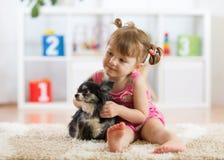 Kd och hundlek i en barnkammare Royaltyfria Bilder