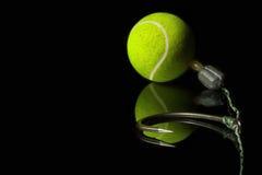KD sautent l'installation Crochet Boilies de carpe Hameçon de carpe Bolili de balle de tennis Photographie stock