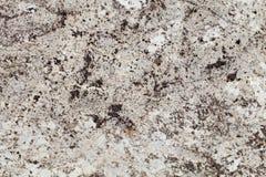 KE Brown Granite. Texture and pattern stock image