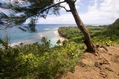 Ke'e plaża od Kalalau śladu z drzewem Obrazy Royalty Free